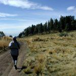 Jak správně běhat a hubnout?